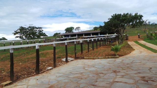 Sítio 22 hectares em Planalmira - Foto 13