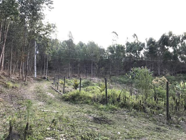 Vendo Fazenda - Foto 17