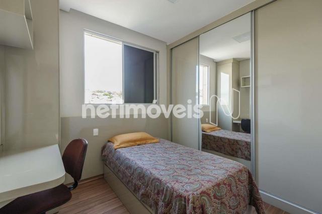 Apartamento à venda com 3 dormitórios em Salgado filho, Belo horizonte cod:680449 - Foto 11