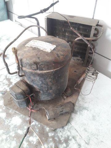 Compressor elgin TCA-1022 / termostato / 4 prateleira de refrigerador   - Foto 2