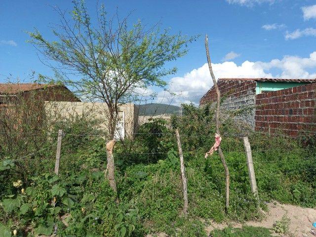Casa e terreno  - Foto 4
