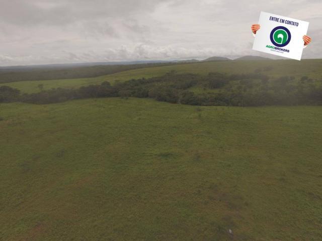 Fazenda 700 ha região do manso - Foto 9