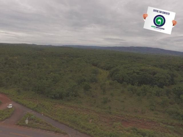 Fazenda 200 ha na beira do asfalto - Foto 9