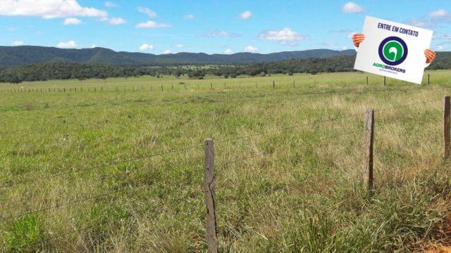 Fazenda 1.650 ha sentido caceres - Foto 5