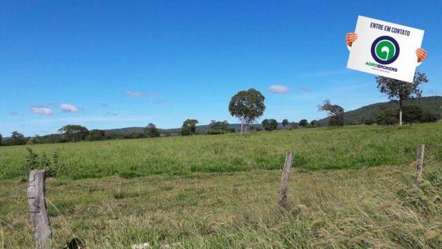 Fazenda 1.650 ha sentido caceres - Foto 15