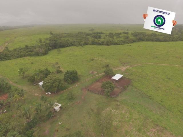 Fazenda 700 ha região do manso - Foto 6