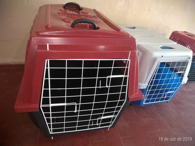 Caixa de Transporte Aéreo N5 ( Cães de Grande Porte ) - Foto 4