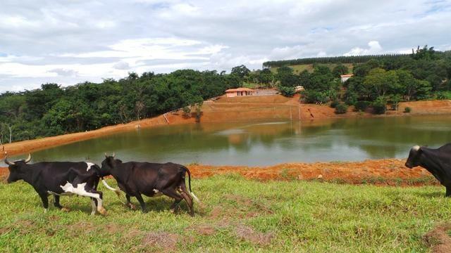 Sítio 22 hectares em Planalmira - Foto 9