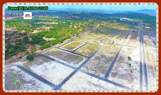 Terras Horizonte Loteamento- Ligue !#@! - Foto 15