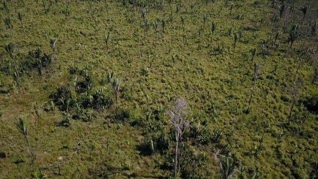 Vende-se Fazenda à 49 km de Porto Velho área com 115 hectares  - Foto 9