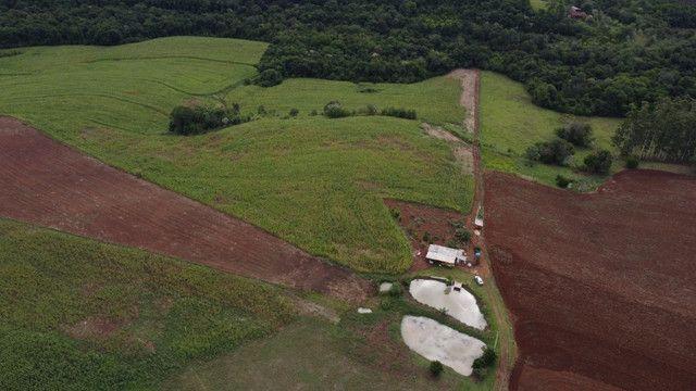 Chácara com acesso ao rio Uruguai 60000 m² barra do lajeado - Foto 3