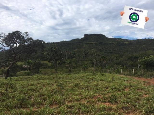 Fazenda 1600 ha no manso - Foto 5