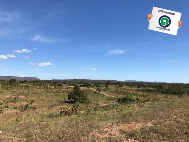 Fazenda 1000 ha no manso - Foto 2