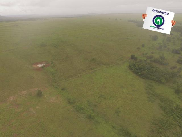 Fazenda 700 ha região do manso - Foto 13