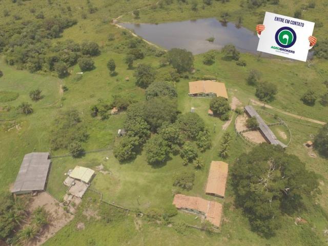 Fazenda 162 ha região de acorizal - mt