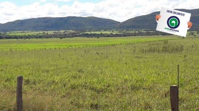 Fazenda 1.650 ha sentido caceres - Foto 7