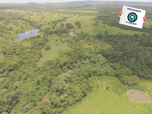 Fazenda 162 ha região de acorizal - mt - Foto 9
