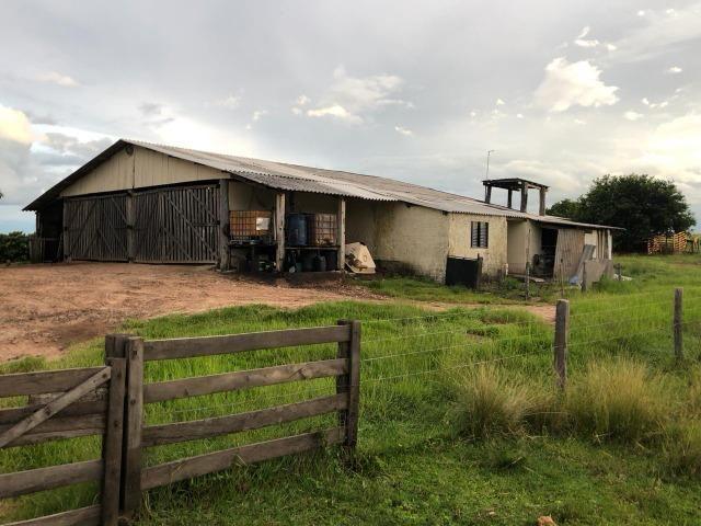 Nova Taquari MT Fazenda a 60 km da cidade com 2.480 hectares em pasto - Foto 5