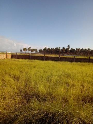 Terreno à beira mar 500m2 - Foto 7