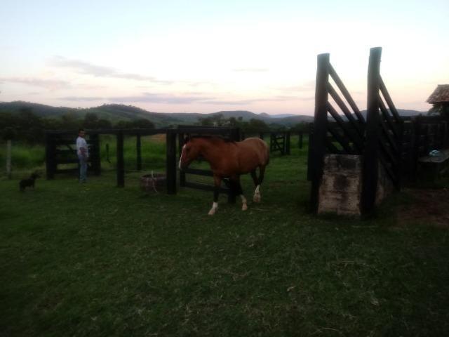 Fazenda em Unaí - MG