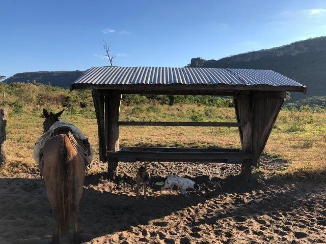 Nova Taquari MT Fazenda a 60 km da cidade com 2.480 hectares em pasto
