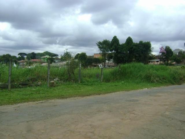 Terreno para alugar em Butiatuvinha, Curitiba cod:01618.001 - Foto 2