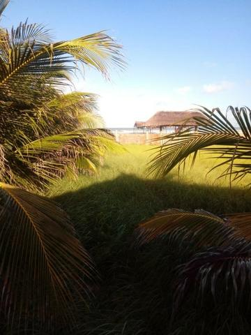 Terreno à beira mar 500m2 - Foto 2