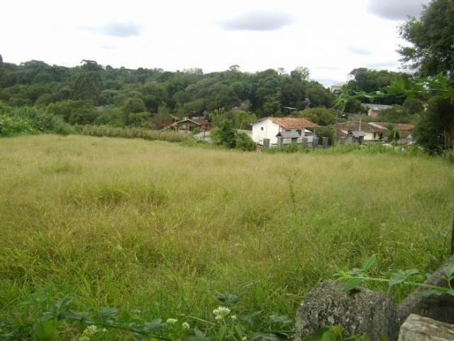 Terreno para alugar em Butiatuvinha, Curitiba cod:01618.001 - Foto 3