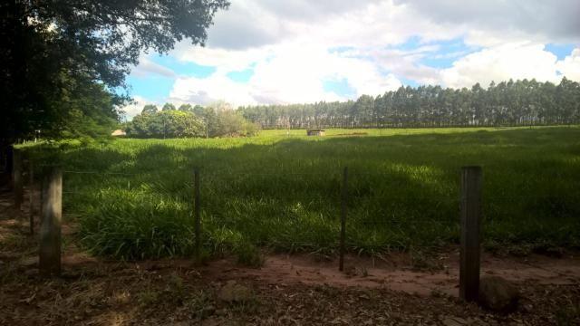 8315 | Sítio à venda em Iguaraçu