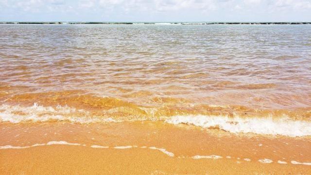 Vendo Terreno 432 m² Corais do Sonho Verde Condomínio Fechado Beira-mar em Paripueira - Foto 3