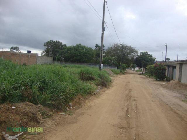 Terreno à venda, 220 m² por R$ 45.000 - Manoel Camelo - Garanhuns/PE - Foto 4