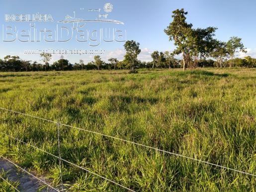 Fazenda Pecuaria 322 Hectares Plana - Foto 2