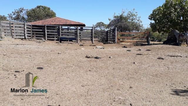 Fazenda em Cocalzinho-G! - Foto 5