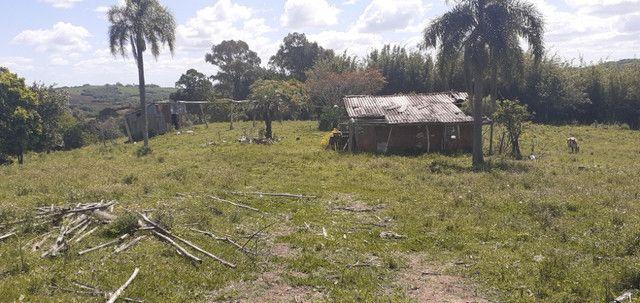 Chacara de 2 hectares á 7 km da br 293 - Foto 8