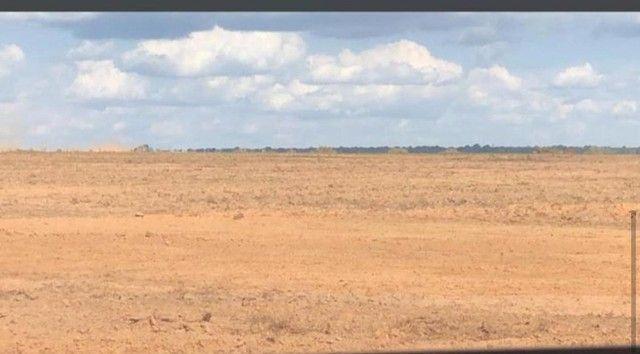 Fazenda Oportunidade de investimento  - Foto 12