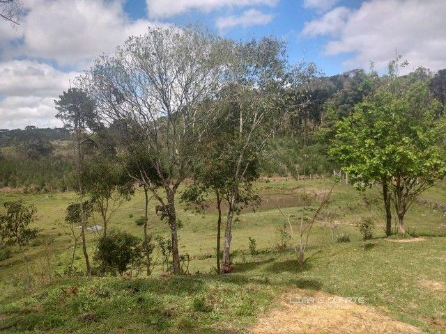 Chácara para Venda em Quitandinha Rio Negrinho-SC - Foto 8