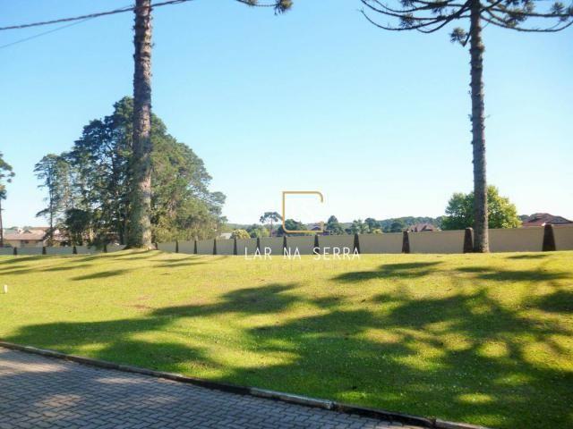Terreno à venda, 701 m² por R$ 600.000,00 - Altos Pinheiros - Canela/RS - Foto 2