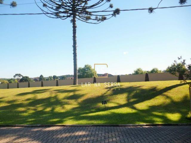 Terreno à venda, 701 m² por R$ 600.000,00 - Altos Pinheiros - Canela/RS