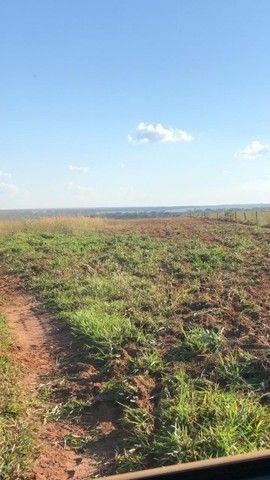 Fazenda Oportunidade de investimento  - Foto 5