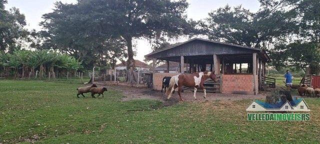 Velleda oferece bar da figueira, 2,3 hectares + ponto histórico de viamão - Foto 15