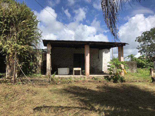 Granja, sítio, fazenda em Igarassu, 4 hectares com bastante benfeitorias! - Foto 7
