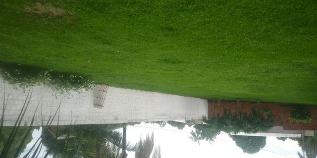 Terreno bairro chico mendes murado lado direito frente e fundo - Foto 4