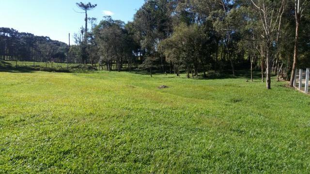 Chácara Bocaiuva do Sul - Foto 2