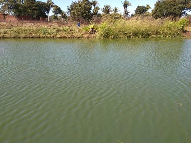 Vendo piscicultura/balneário - Foto 4