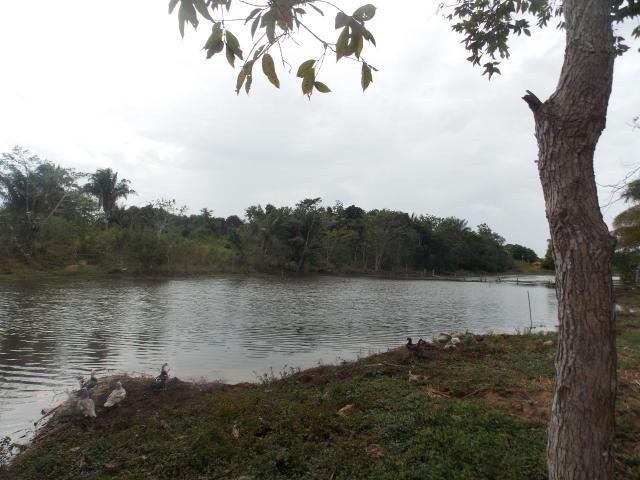 Chácara à venda, 1 quarto, Alto Alegre - Rio Branco/AC - Foto 15