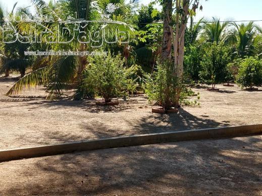 Fazenda Pecuaria 322 Hectares Plana - Foto 9