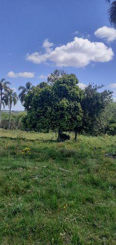 Chacara de 2 hectares á 7 km da br 293 - Foto 6