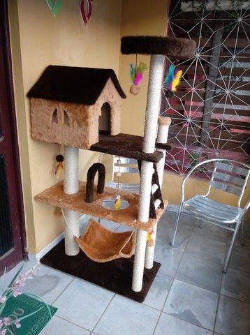 casas de gato - Foto 4