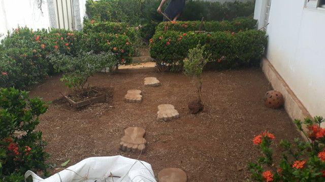 Limpeza de  terrenos  - Foto 4