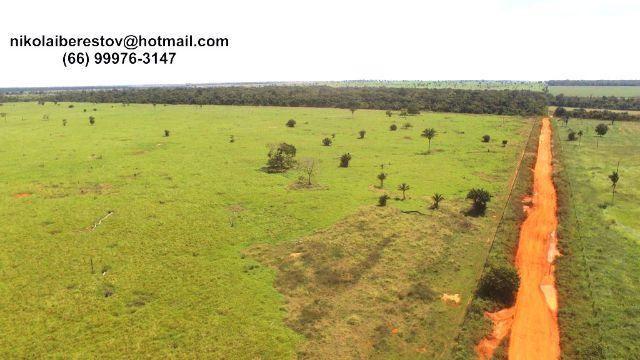 Fazenda 1.936 hectares nordeste mt nikolaiimoveis